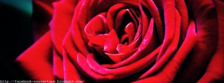 Belle couverture facebook avec fleur d'amour 1