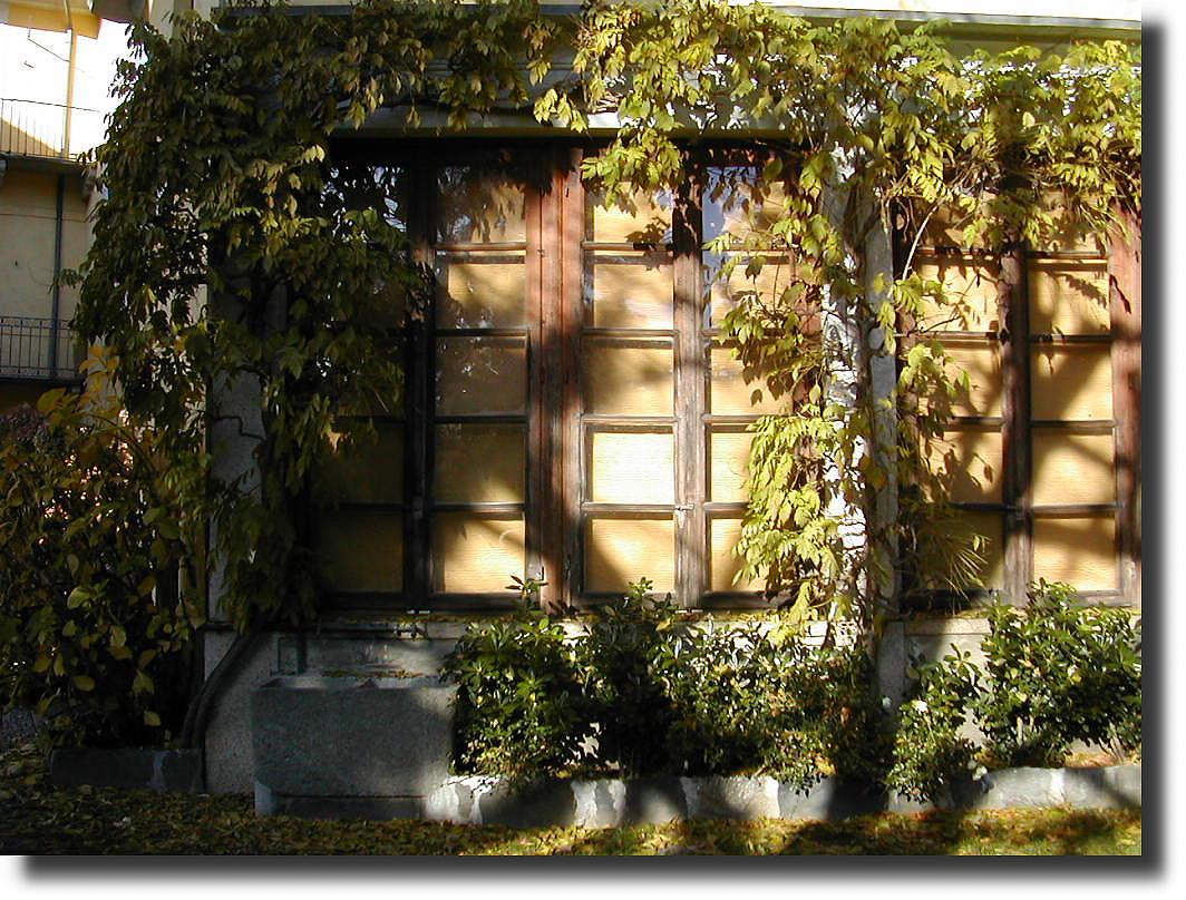 Il giardino d 39 inverno le jardin d 39 ihver winter garden - Il giardino d inverno ...