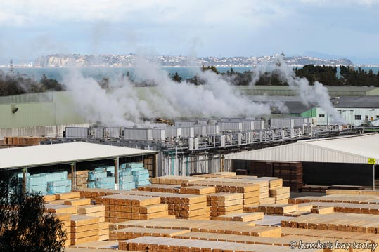 Timber drying kiln and stacks of sawn timber at Pan Pac Forest Products Ltd, Whirinaki, SH2 north of Napier. photograph