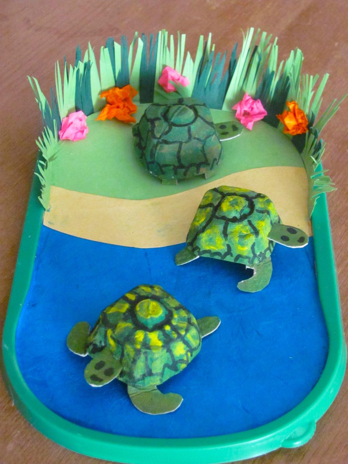 Jumble Tree: Turtles and Tortoises - photo#20