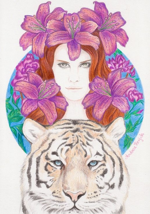 Andrea Hrnjak drawings illustrations indian women animals Diamond eyes