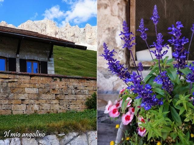 Ilmioangolino case di montagna for La casa di montagna progetta il colorado