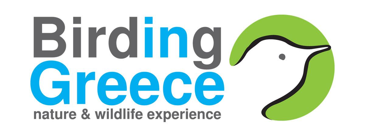 Birding Greece