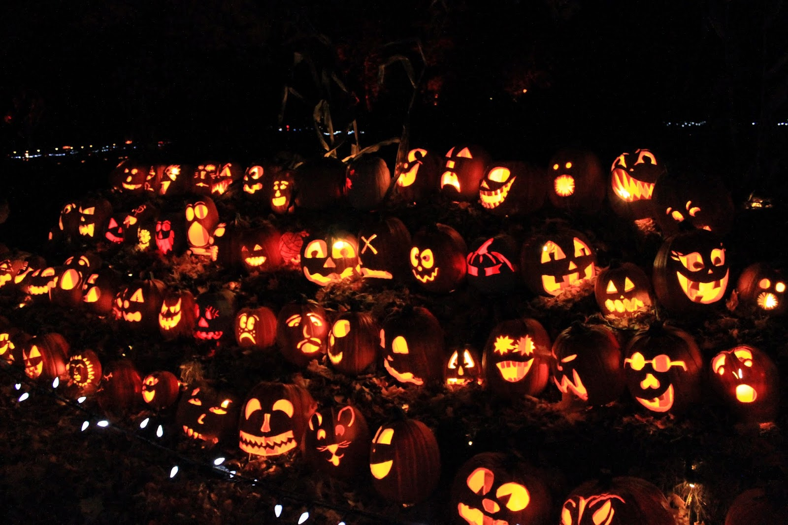 Night lights upper canada village - Pumpkin Inferno Upper Canada Village
