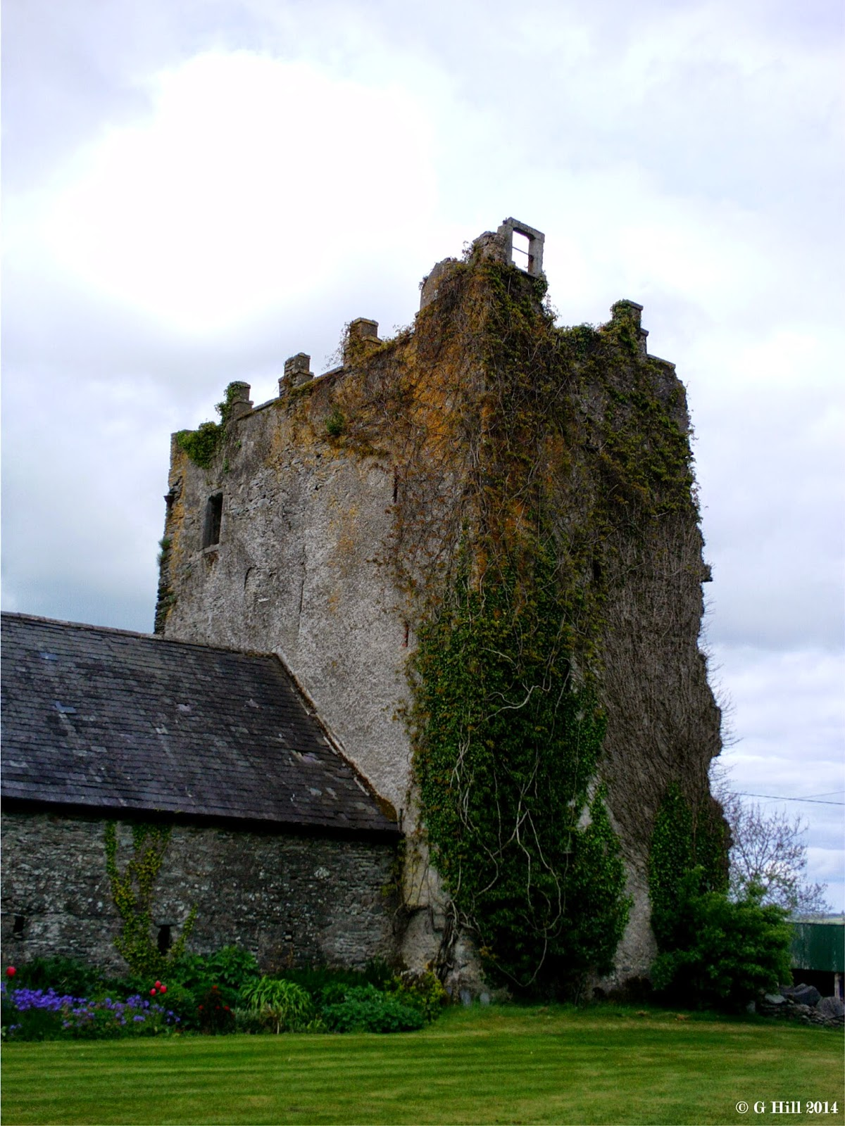 Ireland In Ruins Blackhall Castle Co Kildare