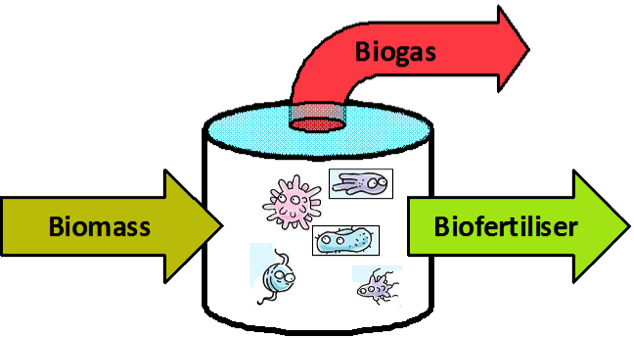 thesis biogas Master's thesis cryogenic biogas upgrading using plate heat exchangers master's thesis within the sustainable energy systems master's programme.