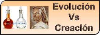 ¿Nos crearon o evolucionamos?