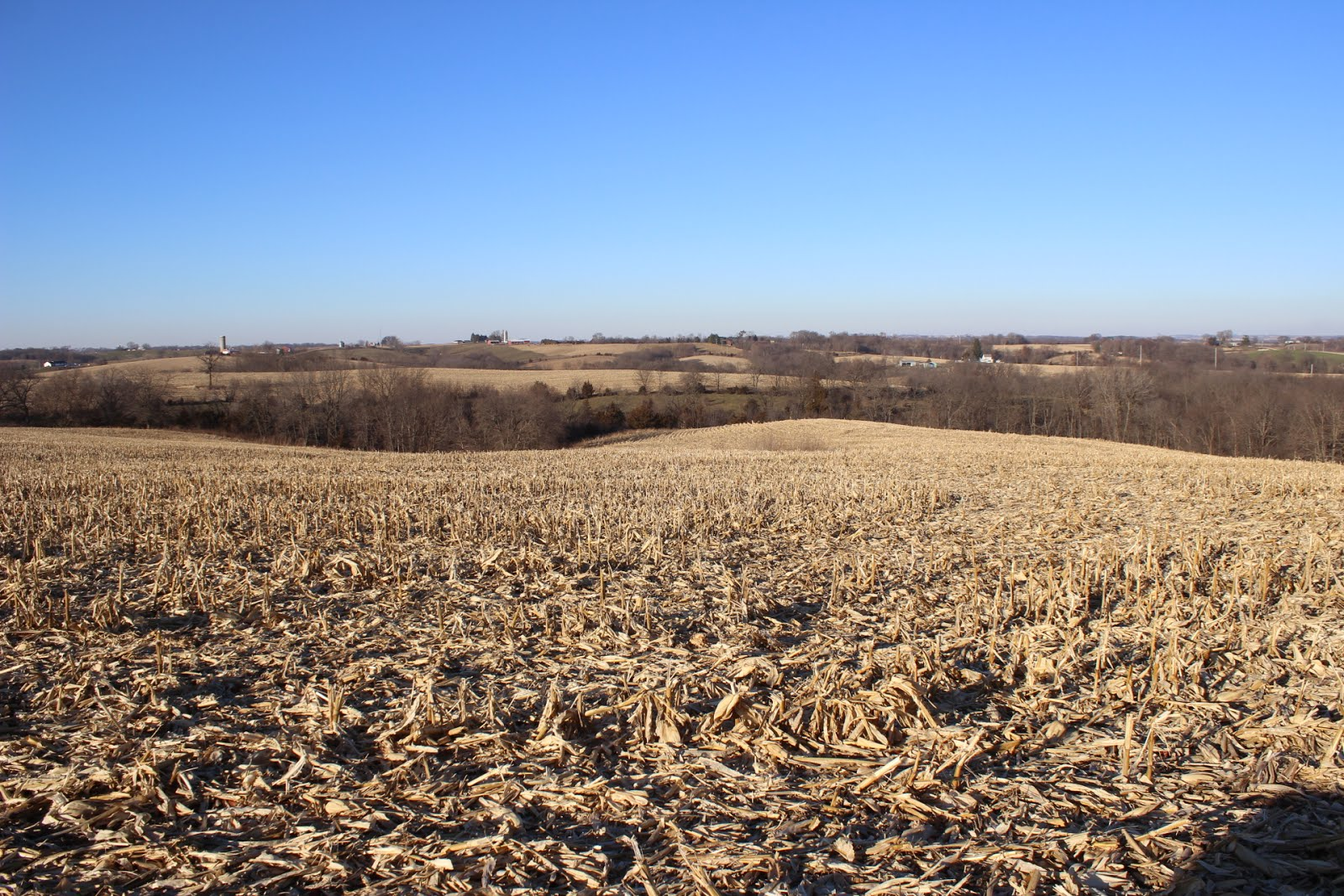 173.37 Acres, Sections 3 & 4, South Fork Township
