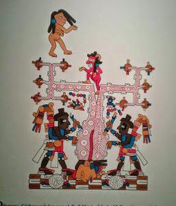 TATA - NDAZAHUÍNDANDAA
