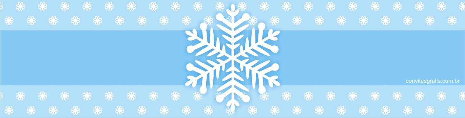 adesivo agua gratis para imprimir Frozen