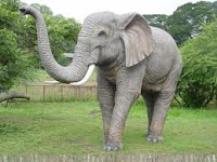 Gajah di kebun binatang