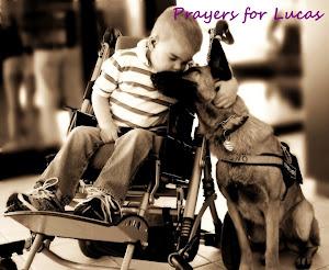 Prayers for Lucas