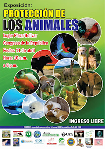 REALIZARAN EXPOSICION SOBRE PROTECCION DE LOS ANIMALES
