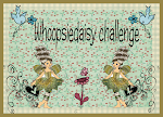 Whoopsidaisy Challenge Sundays