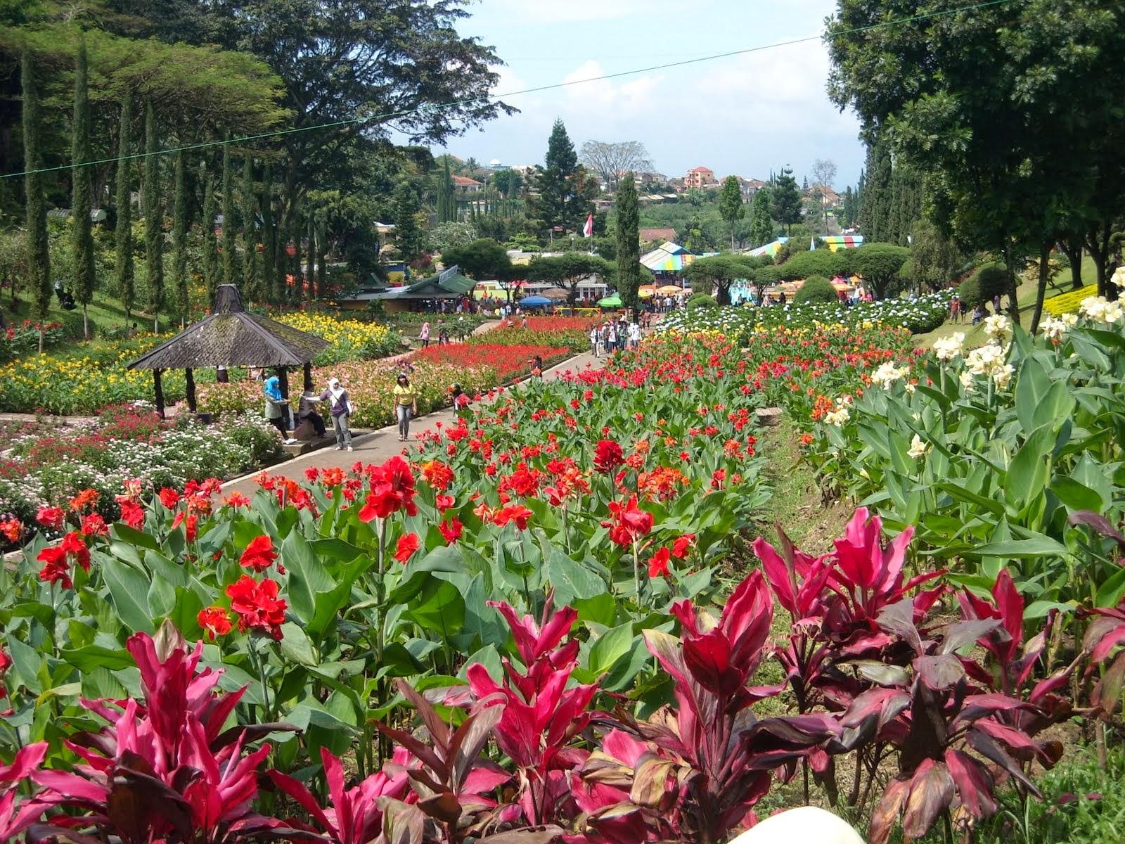10 Taman Bunga Eksotis Di Indonesia Taman DHie