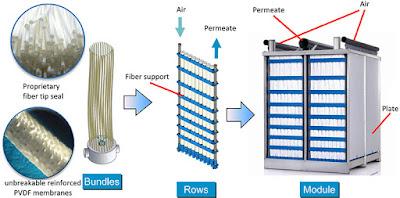 cấu trúc màng