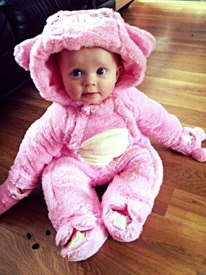 Little Pink Sheep