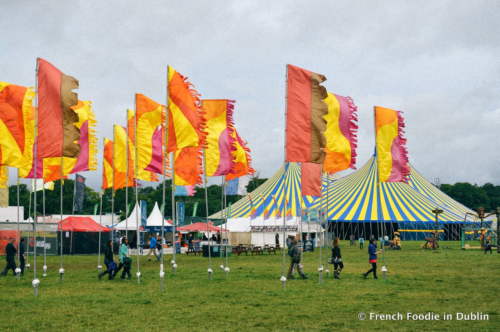 Electric Picnic 2014: What a