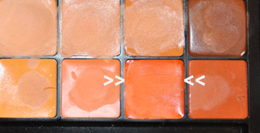 how to get rid of dark circles, ben nye concealer palette