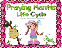 http://www.teacherspayteachers.com/Product/Praying-Mantis-Life-Cycle-Pack-with-Observation-Journal-Labeling-Pages-More-668695