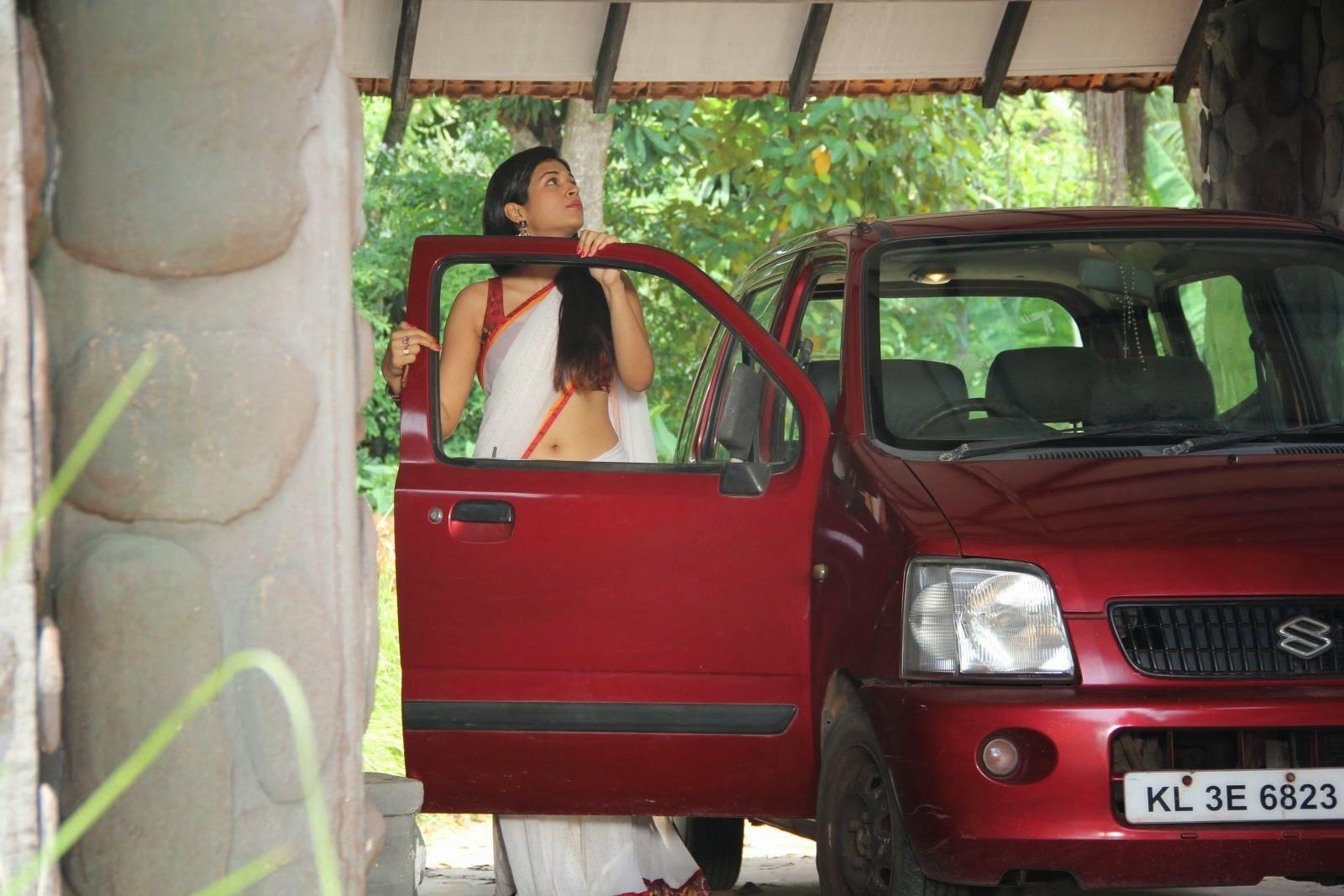 Shraddha Das Hot Navel In Saree in Dracula 2012 Movie ...