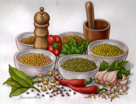 Viv ncies condimentos especias y hierbas arom ticas i for Cultivo de plantas aromaticas y especias