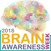 Il GdN organizza eventi per un'intera Settimana Mondiale del Cervello