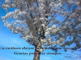 http://traslasamapolas.blogspot.com.es/