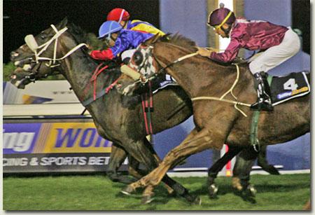 betting world horse racing