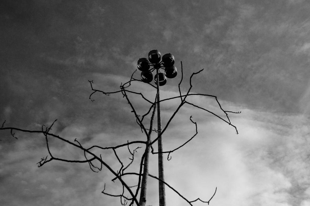 Pas de deux, by Guillermo Aldaya / PhotoConversa