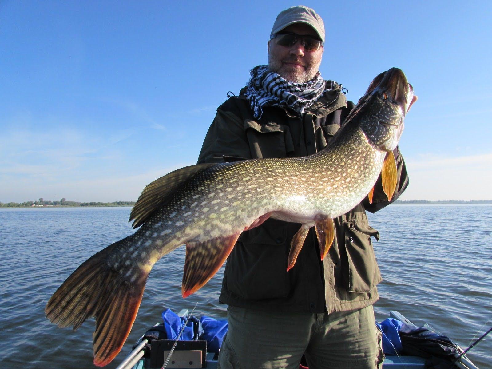 платные озера для рыбалки алтайского края