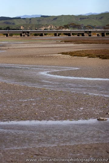 Low tide in the Ahuriri Estuary (and the Embankment Bridge), Napier photograph