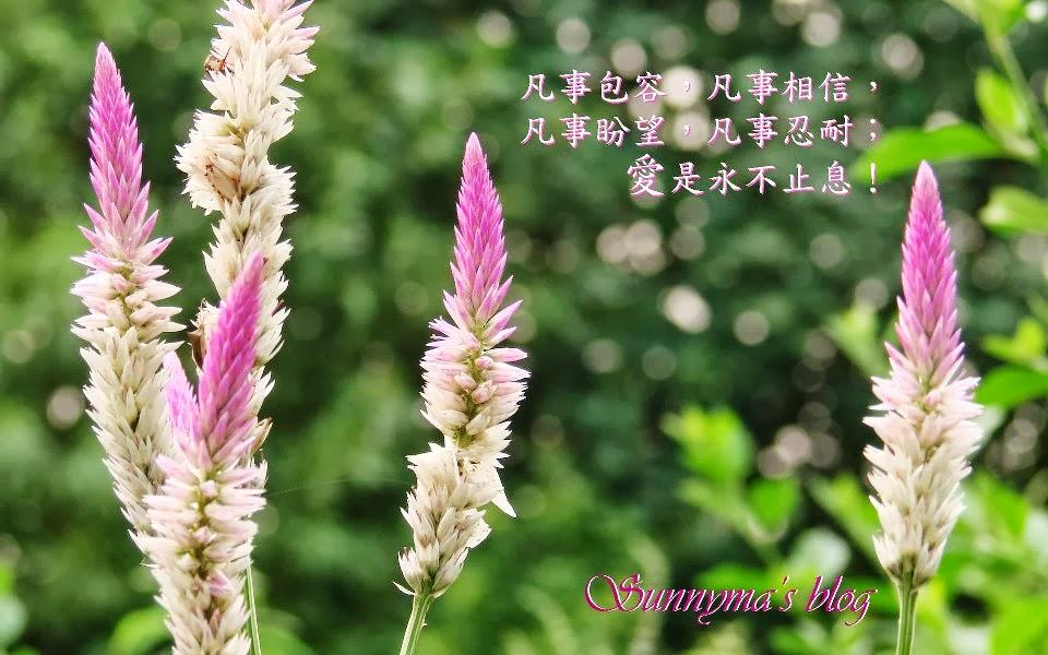 Sunnyma's Blog