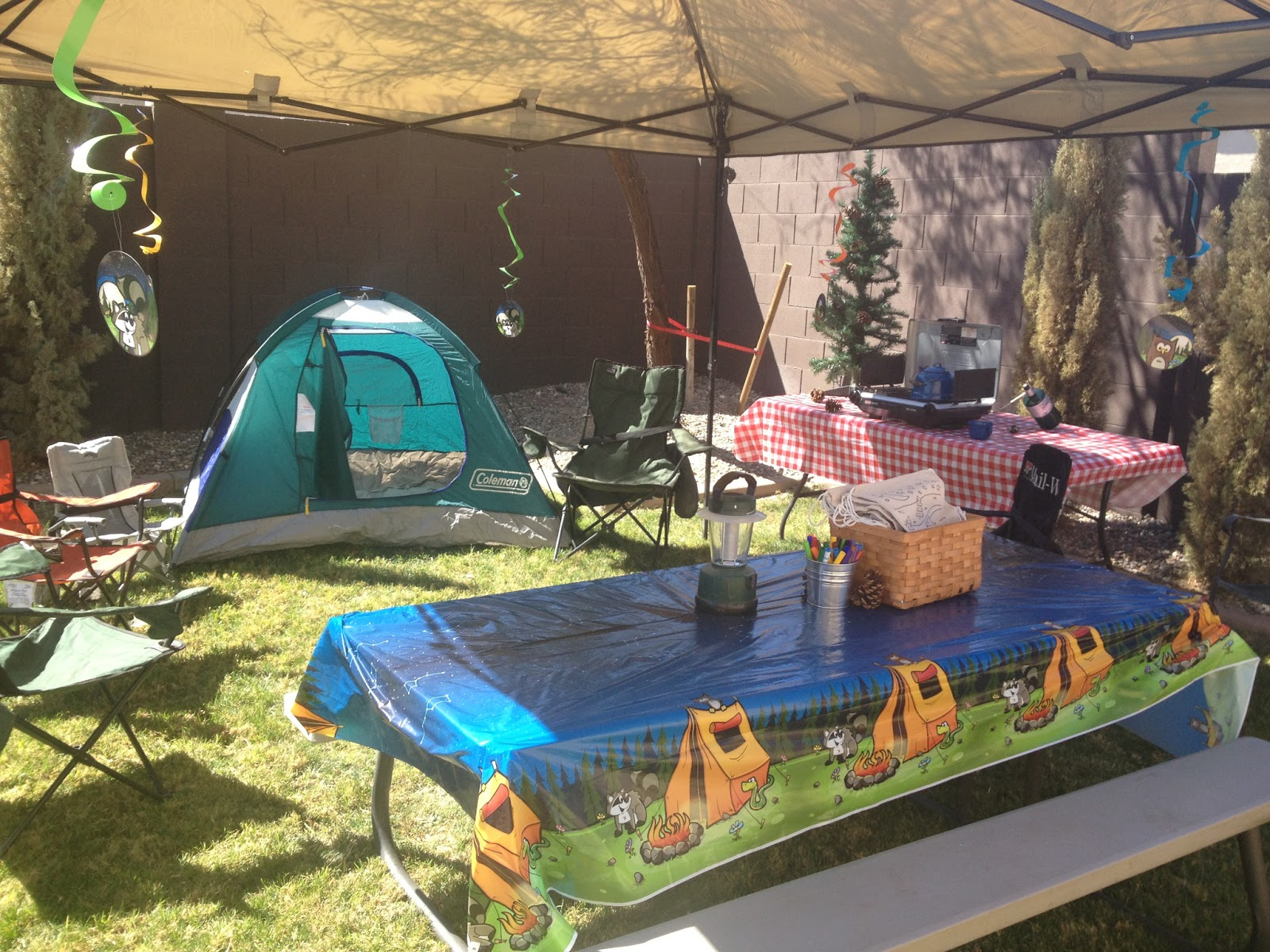 the busy broad camping themed birthday party decorations. Black Bedroom Furniture Sets. Home Design Ideas