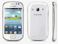 Cara Mudah Root Samsung Galaxy Fame GT-S6810 Tanpa PC