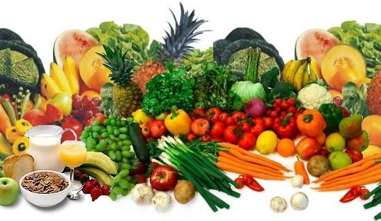 Nutrição nas fases da vida desde a gestação até o envelhecimento 8