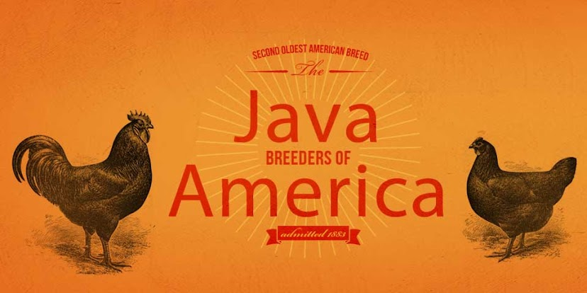 Java breeders