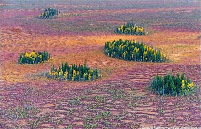 Tundra in the Khanty-Mansi Okrug avtonomnomnom