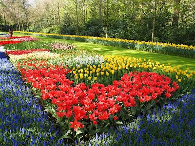 Parque floral Keukenhof en Lisse