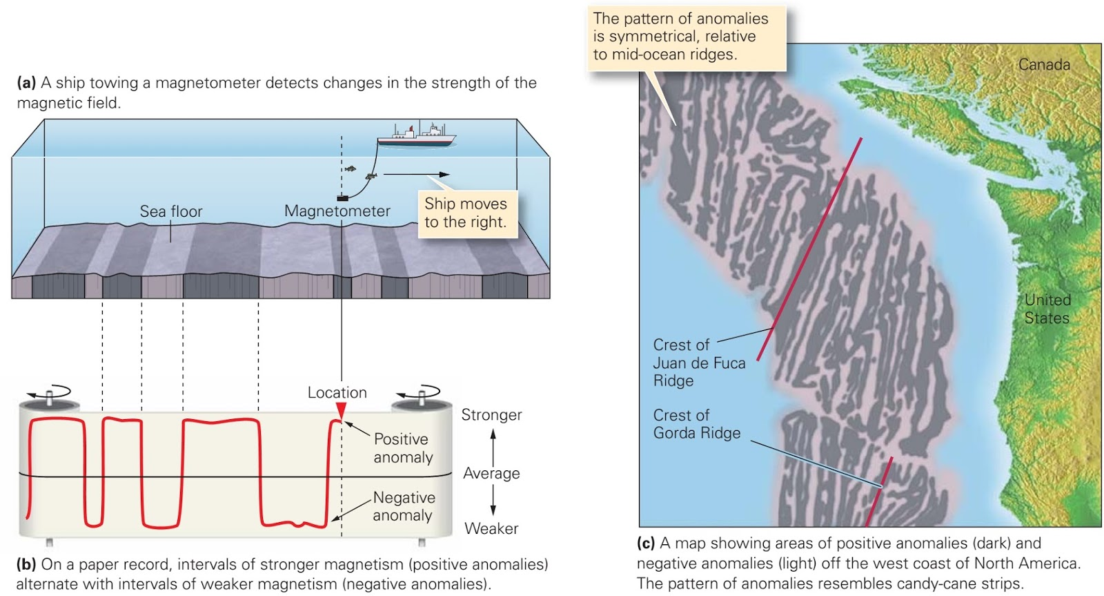 evidence for sea floor spreading learning geology. Black Bedroom Furniture Sets. Home Design Ideas