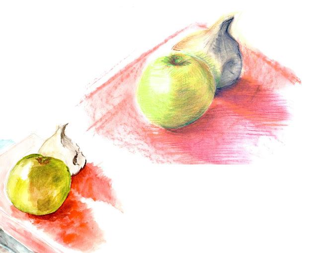 manu lafay nature morte pomme ail pastel sec aquarelle
