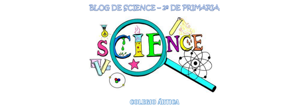 SCIENCE 2º PRIMARIA ÁRTICA