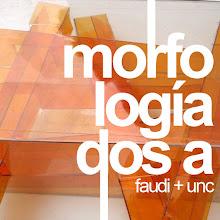 Blog Morfología 2A