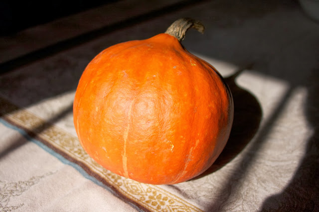 Red Kuri Squash: Simple Living and Eating