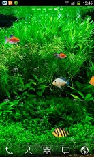 Fish Tank Live Wallpaper 2.jpg