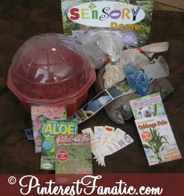 Educational Toys Planet, Sensory Dome, Greenhouse, Herbs, Terrarium