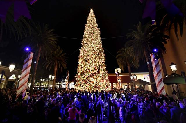 Christmas Tree in Newport Beach, California