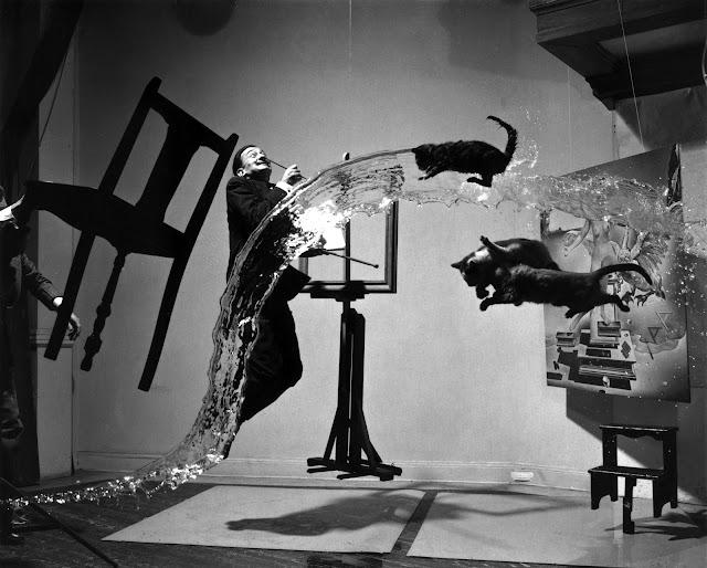 дали и кошки в прыжке