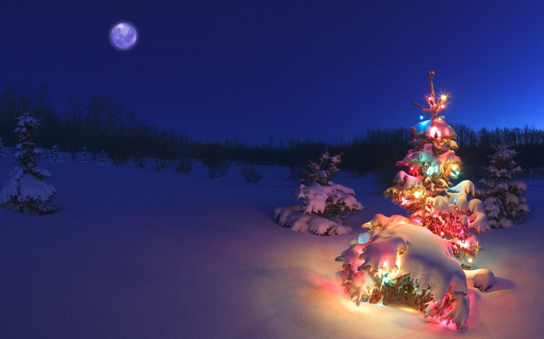 Arbol de Navidad con luces de colores en la nieve   Wallpaper HD ...