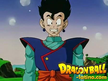 Dragon Ball Z capitulo 251